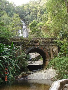 wpid Tijuca National Park Rio Tijuca National Park Rio